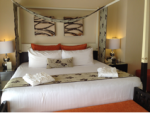 bed cc2 blog